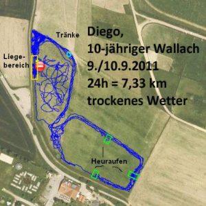 GPS-Messungen im Offenstall