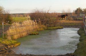 Biotope im Offenstall