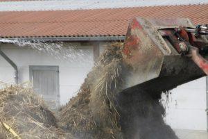 BioAktiv Pferdemist Offenstall